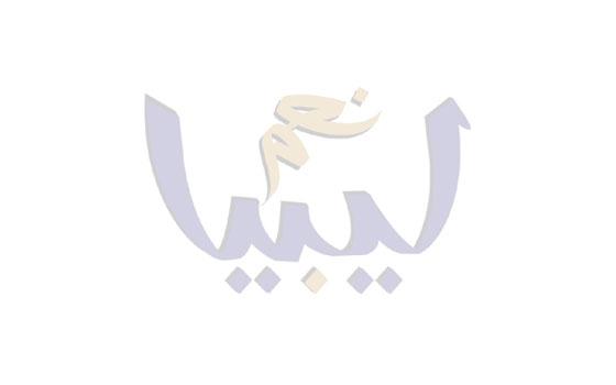 المغرب اليوم - علي سفيان يعلن أنّ أسامة بن لادن لم يختبئ من الولايات المتحدة الأميركية